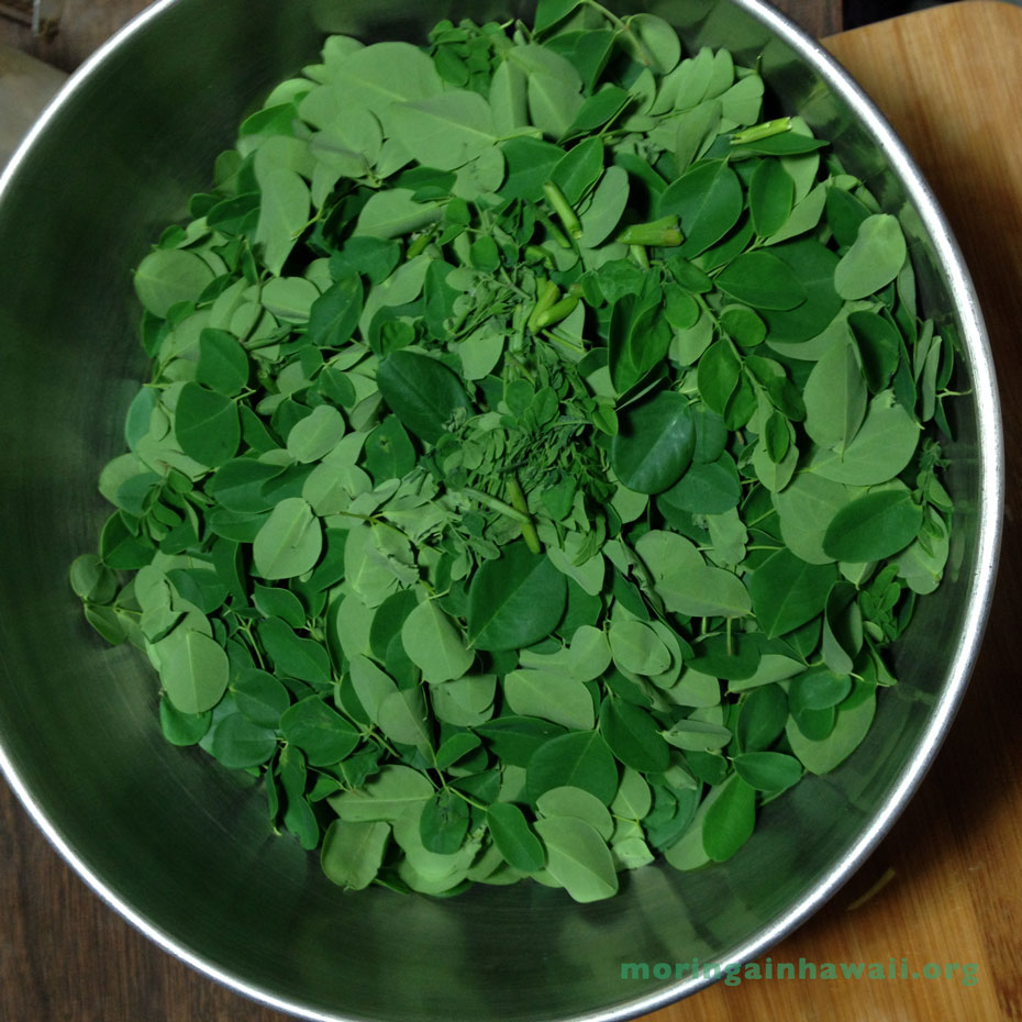 moringa leaflets in a bowl ready to be cooked